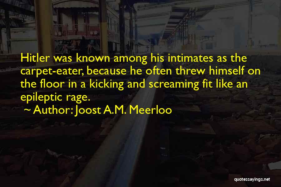 Joost A.M. Meerloo Quotes 225137