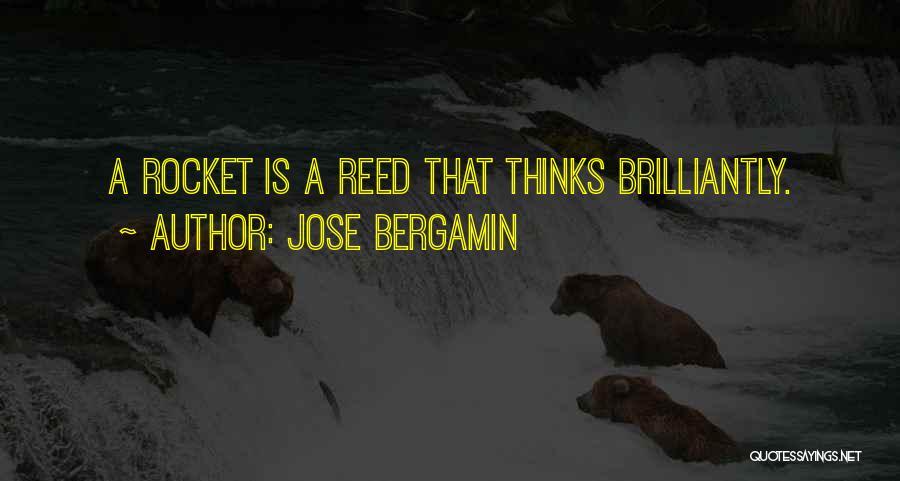 Jose Bergamin Quotes 408848