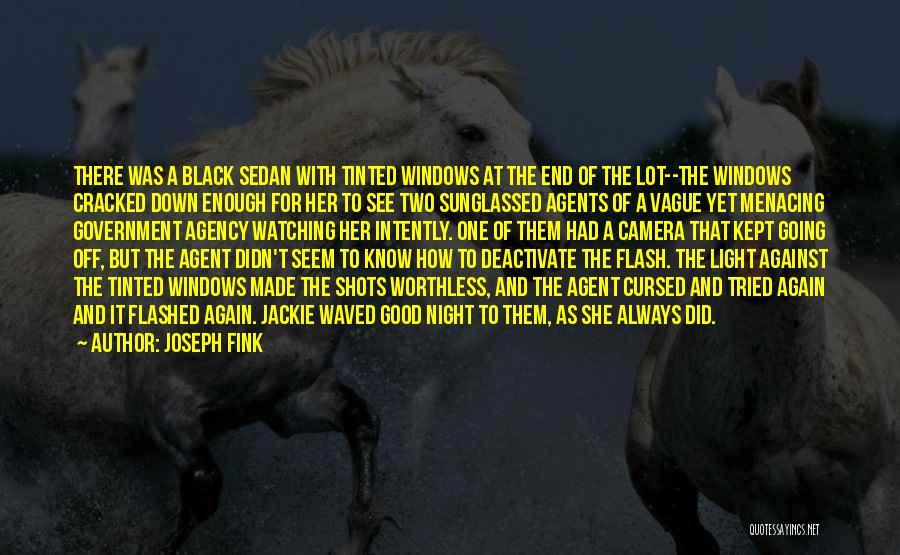 Joseph Fink Quotes 168054