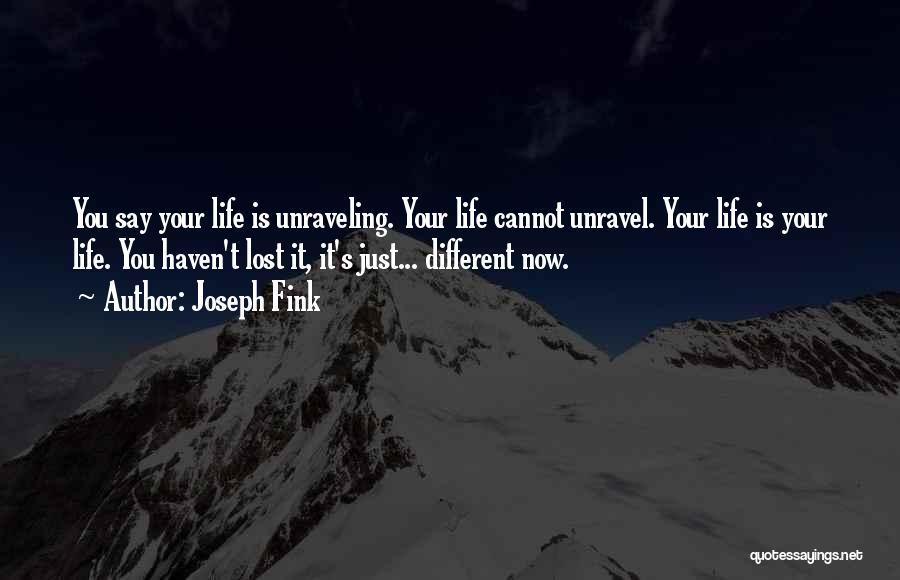 Joseph Fink Quotes 2139913