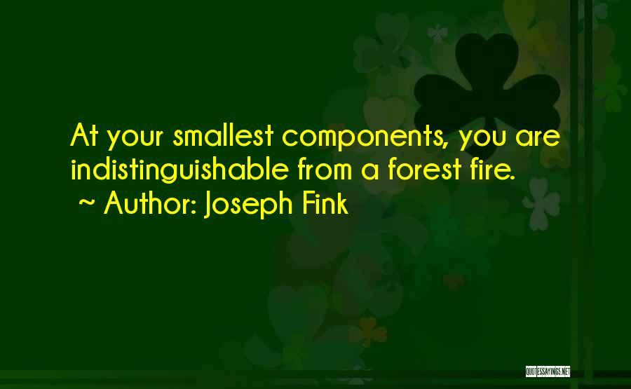 Joseph Fink Quotes 233354