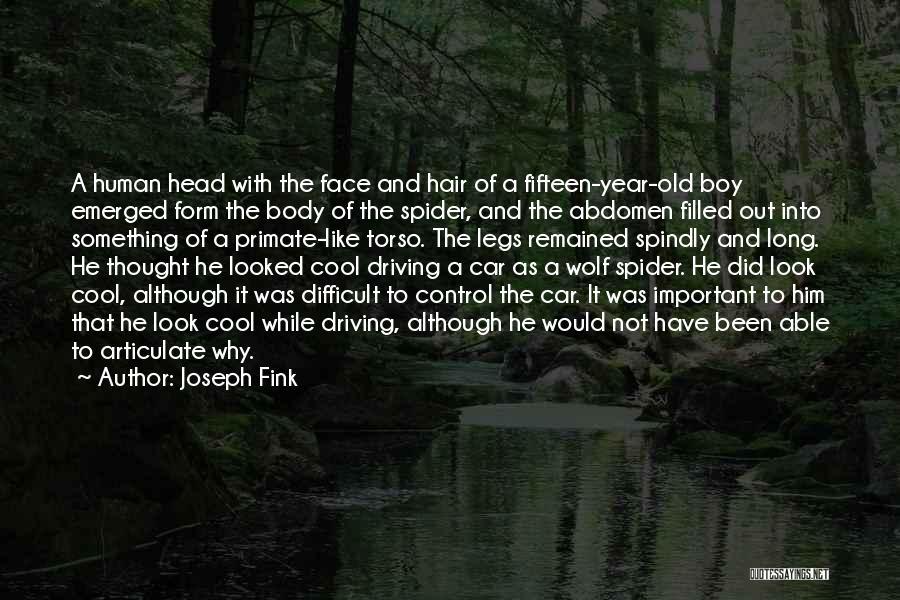 Joseph Fink Quotes 837265