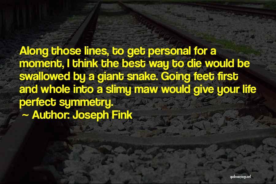 Joseph Fink Quotes 876458