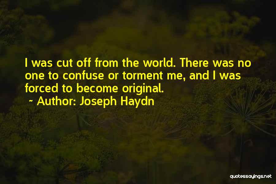 Joseph Haydn Quotes 290737