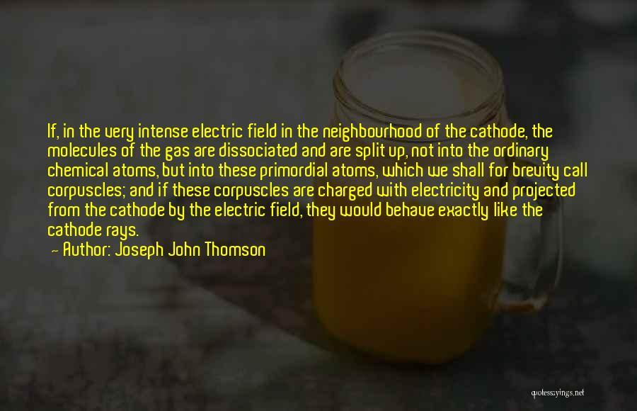 Joseph John Thomson Quotes 912013