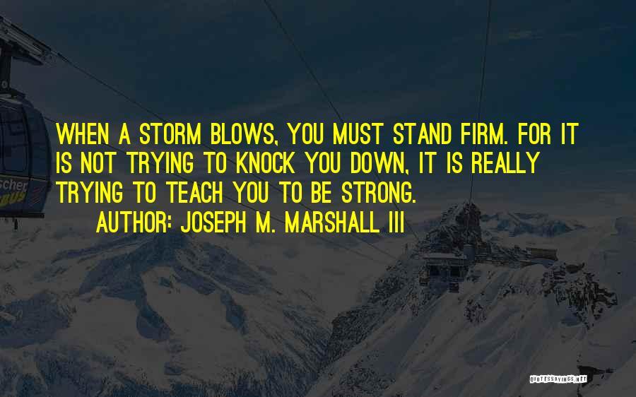 Joseph M. Marshall III Quotes 1592559