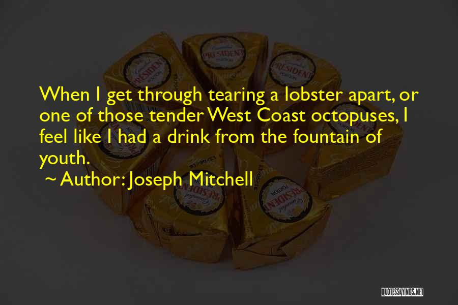 Joseph Mitchell Quotes 2186483