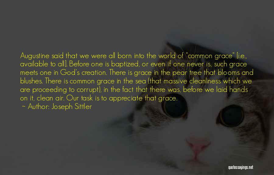 Joseph Sittler Quotes 1361378