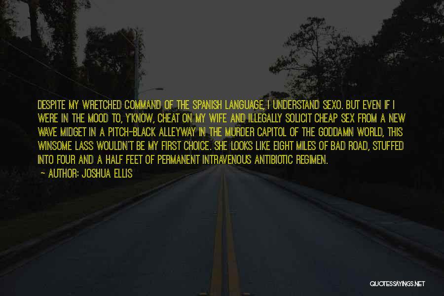 Joshua Ellis Quotes 775805
