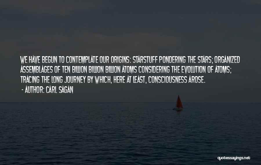 Journey Has Just Begun Quotes By Carl Sagan