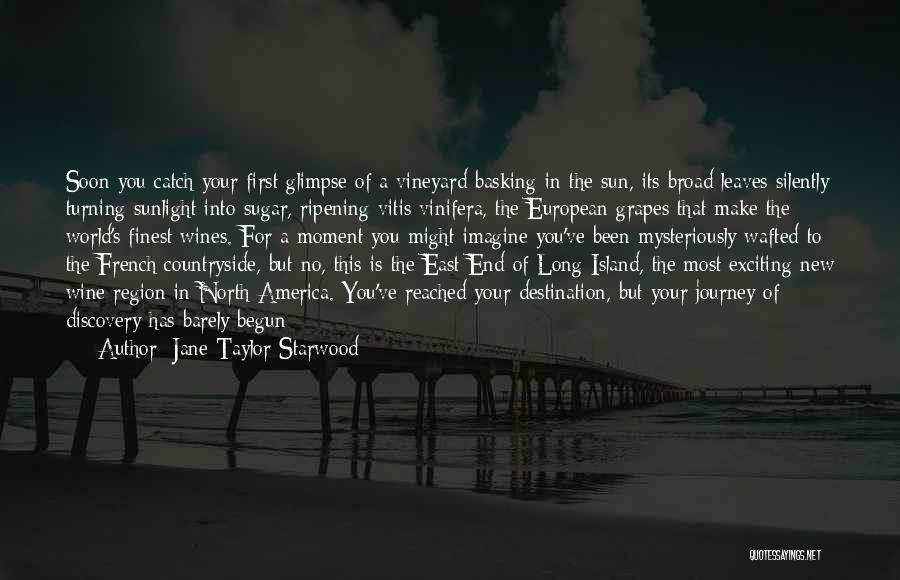 Journey Has Just Begun Quotes By Jane Taylor Starwood