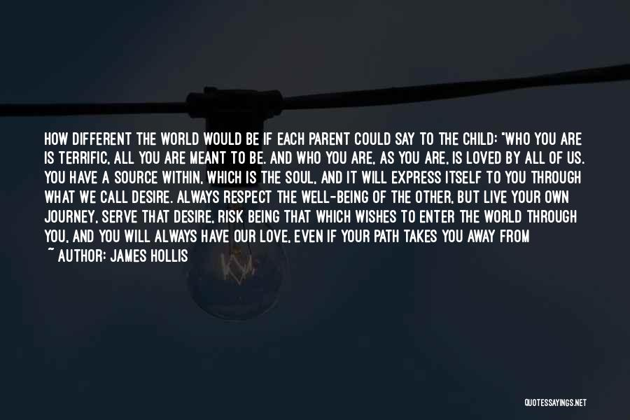 Journey Through Love Quotes By James Hollis