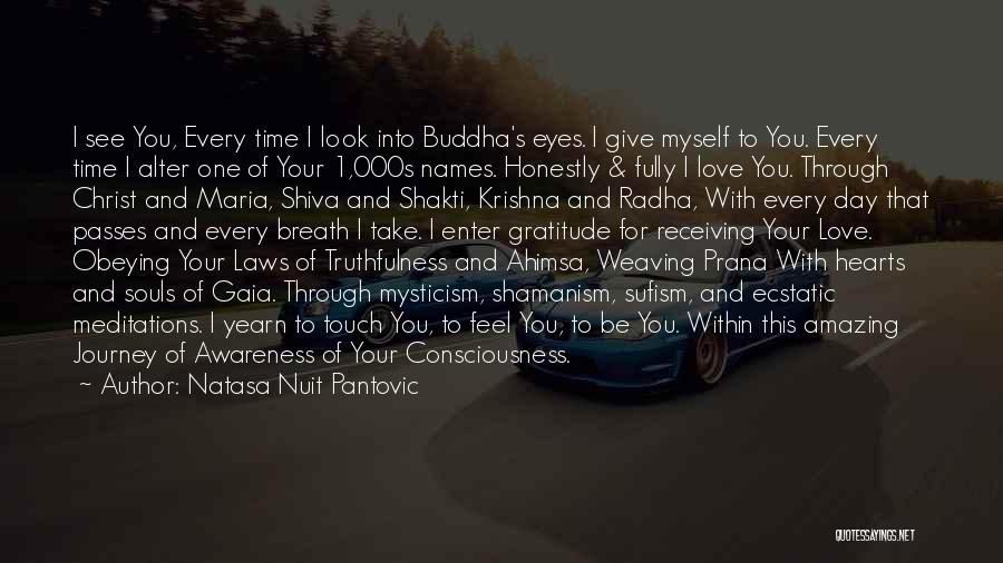 Journey Through Love Quotes By Natasa Nuit Pantovic