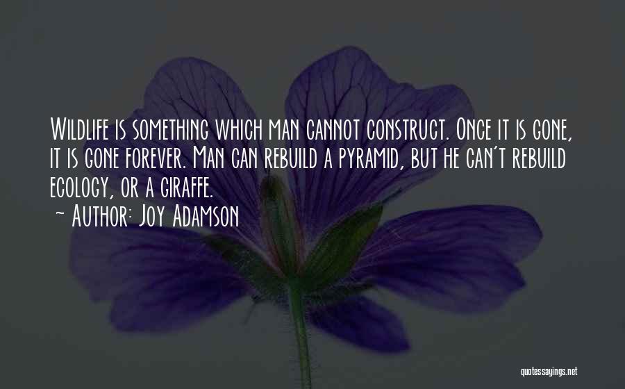 Joy Adamson Quotes 1656542