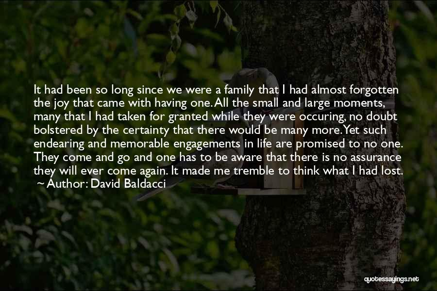 Joy And Family Quotes By David Baldacci
