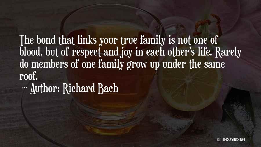 Joy And Family Quotes By Richard Bach