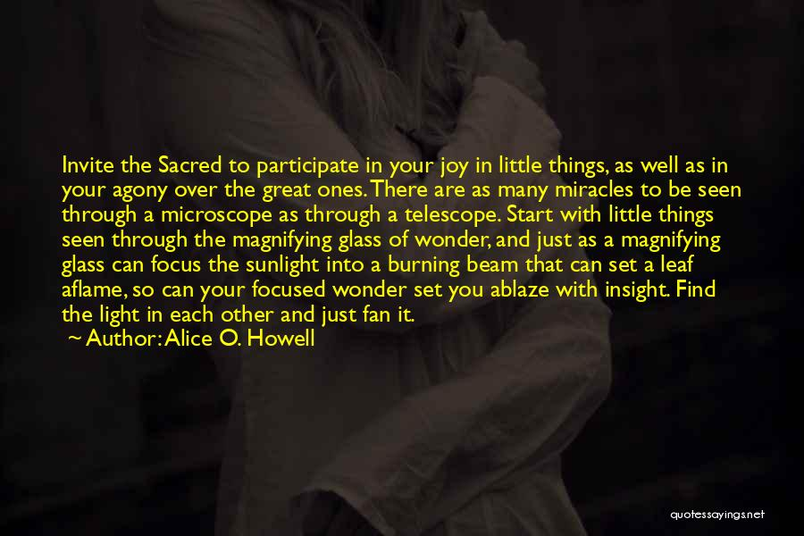 Joy In The Little Things Quotes By Alice O. Howell