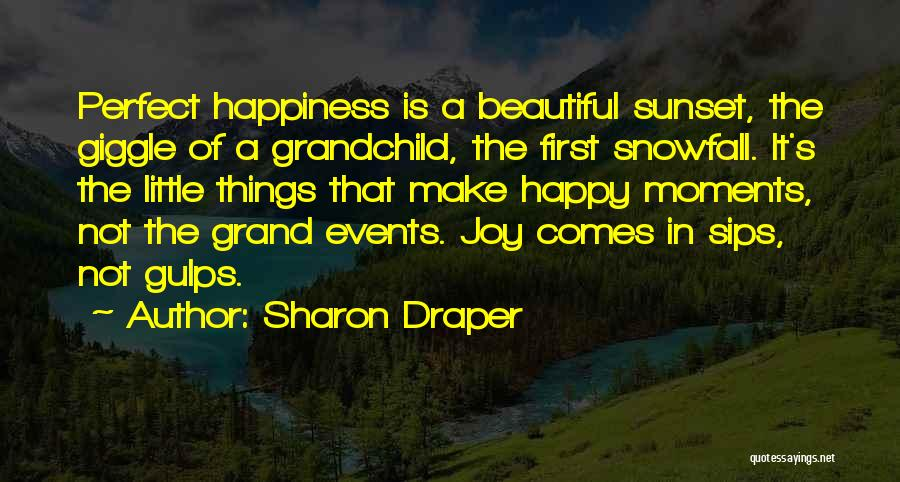 Joy In The Little Things Quotes By Sharon Draper