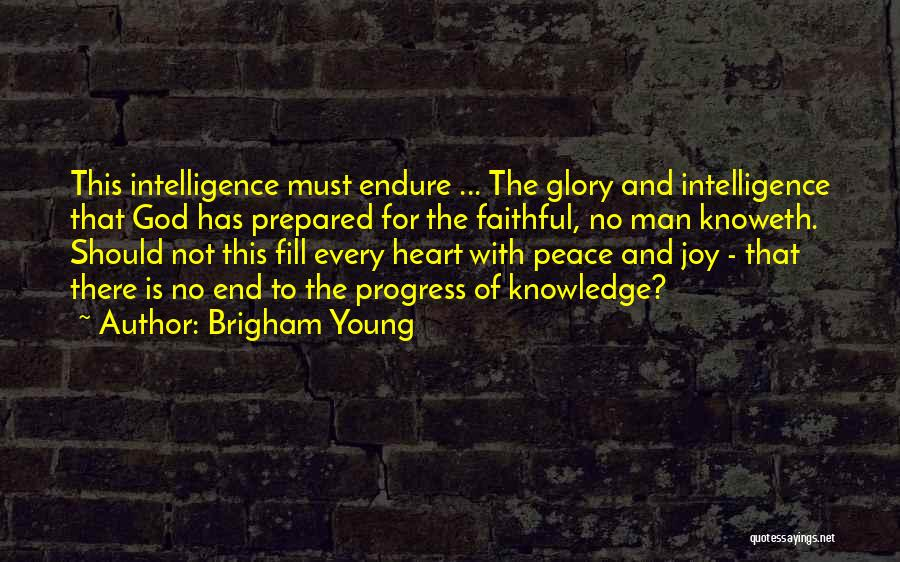 Joy Of God Quotes By Brigham Young