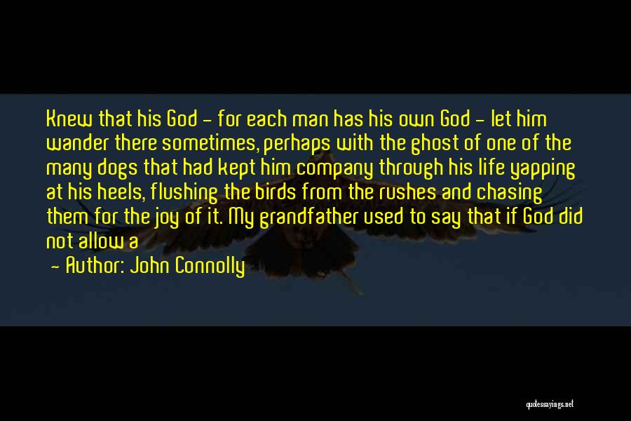 Joy Of God Quotes By John Connolly