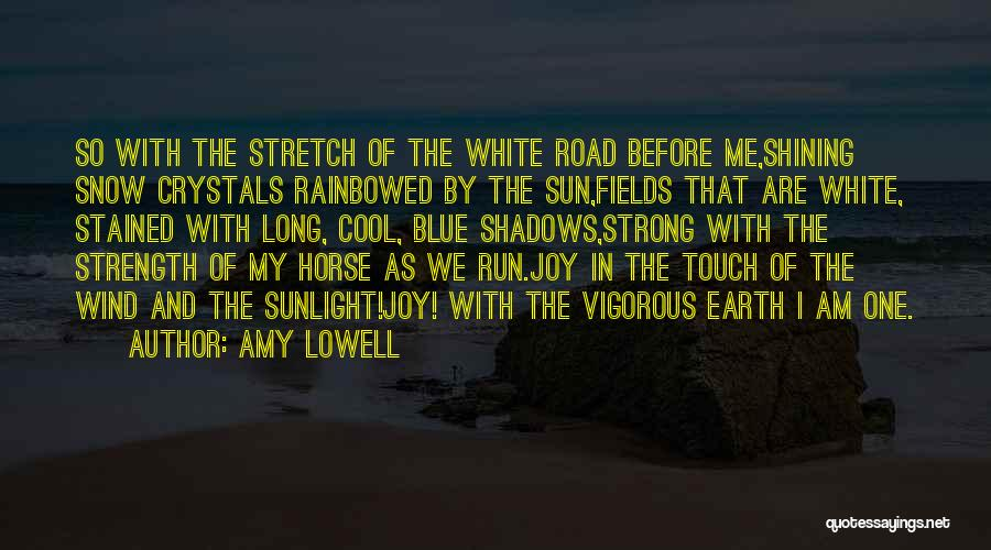 Joy Road Quotes By Amy Lowell