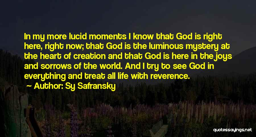 Joy To The World Quotes By Sy Safransky
