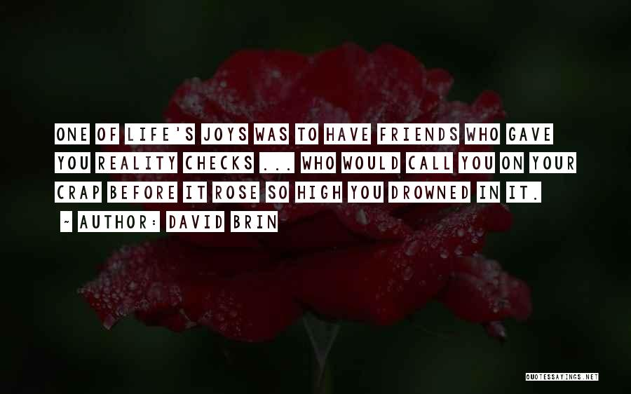 Joys In Life Quotes By David Brin
