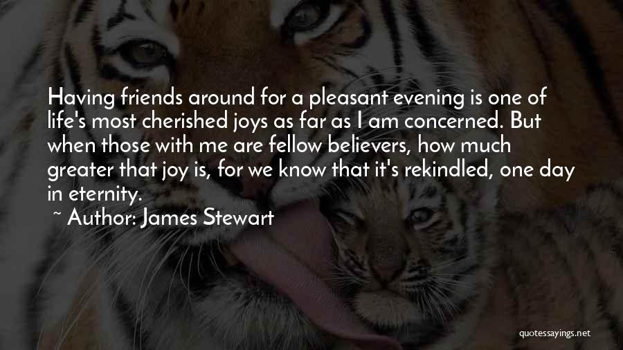 Joys In Life Quotes By James Stewart