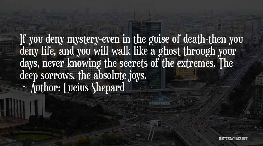 Joys In Life Quotes By Lucius Shepard