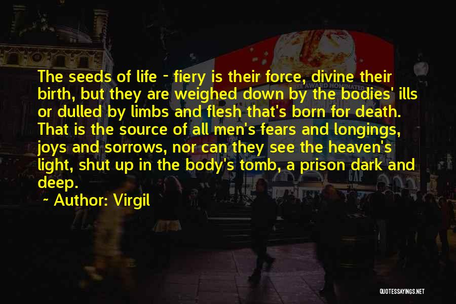 Joys In Life Quotes By Virgil