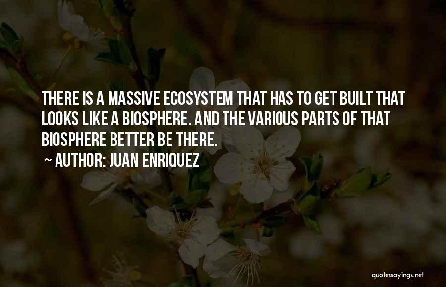 Juan Enriquez Quotes 894401