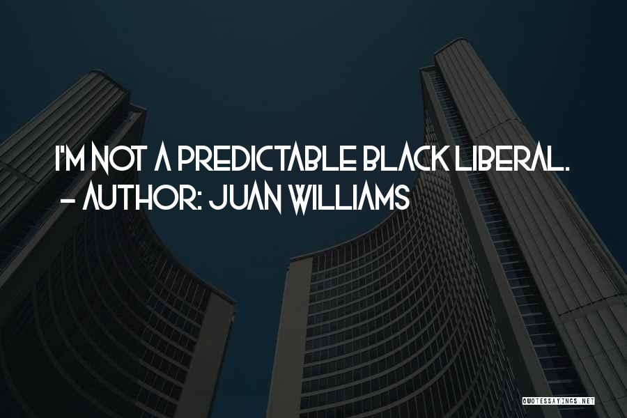 Juan Williams Quotes 2137027