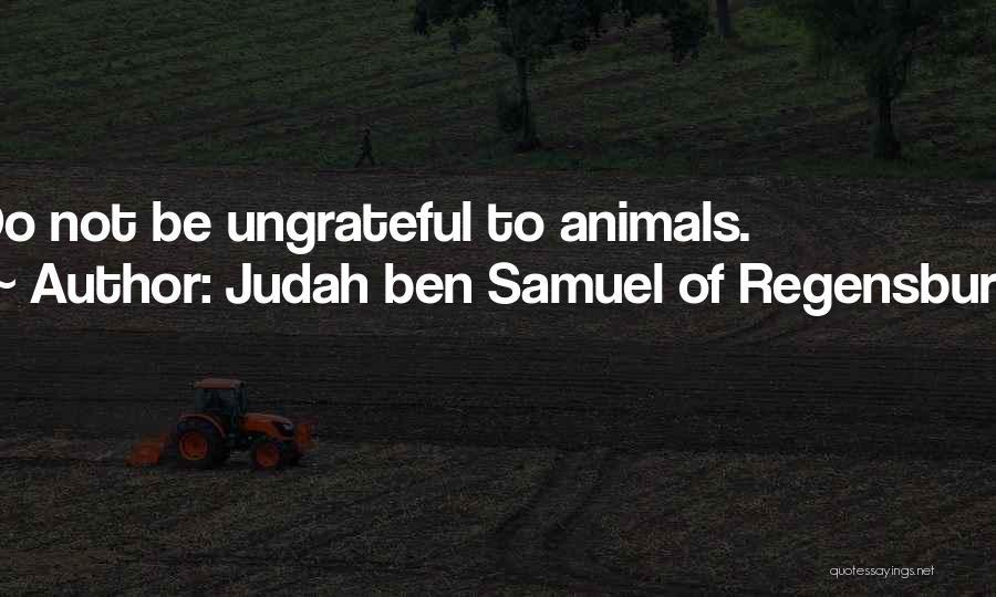 Judah Ben Samuel Of Regensburg Quotes 1720863