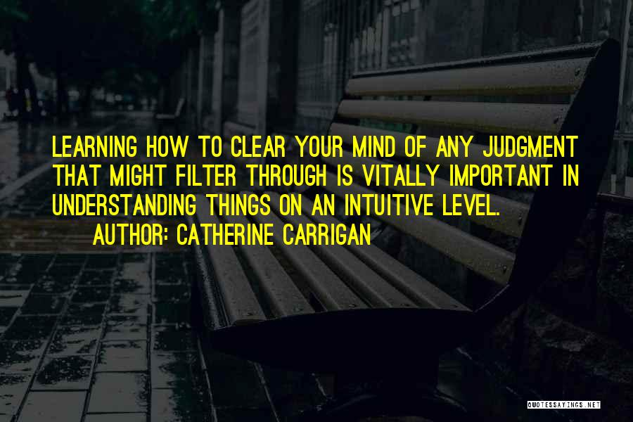 Judgment Quotes By Catherine Carrigan