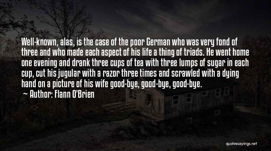 Jugular Quotes By Flann O'Brien
