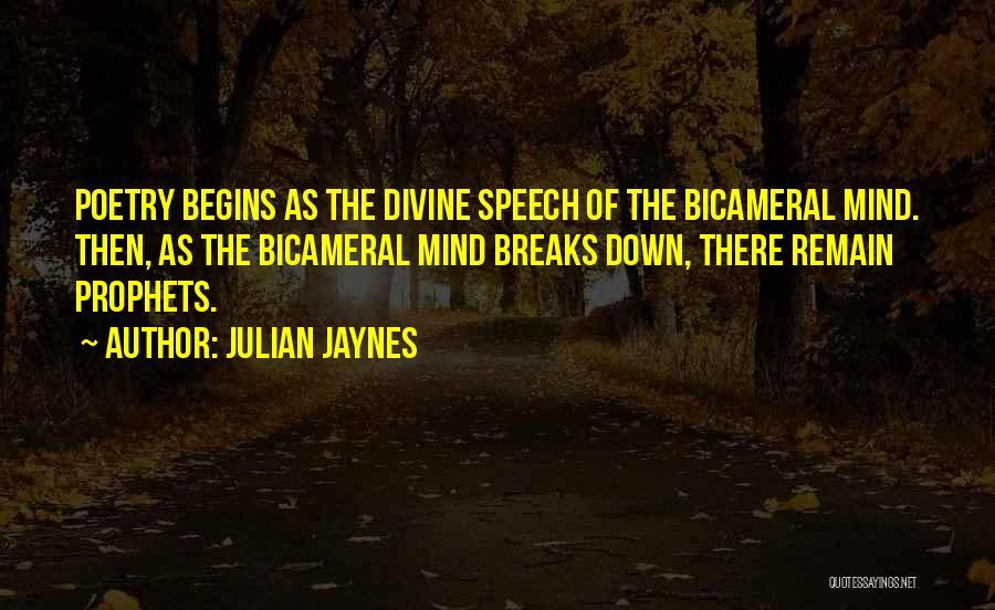 Julian Jaynes Quotes 1217318