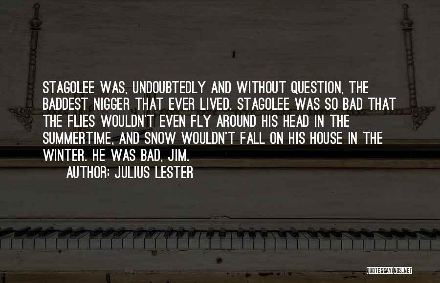 Julius Lester Quotes 1323571