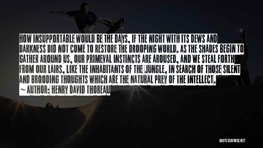 Jungle Quotes By Henry David Thoreau