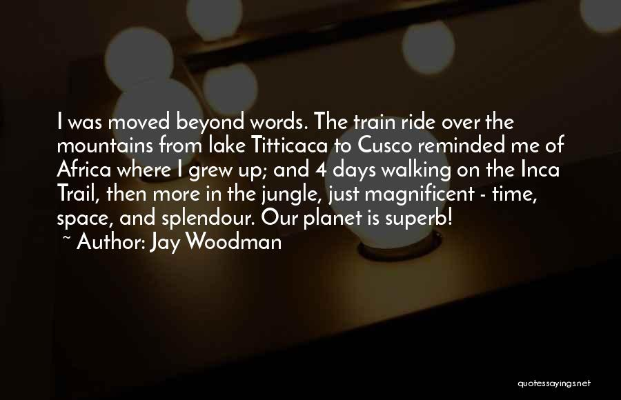 Jungle Quotes By Jay Woodman