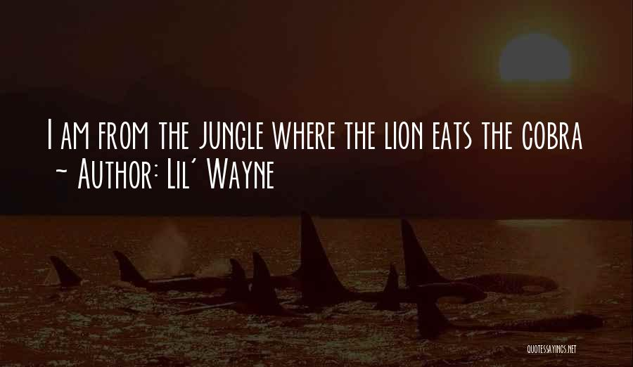 Jungle Quotes By Lil' Wayne