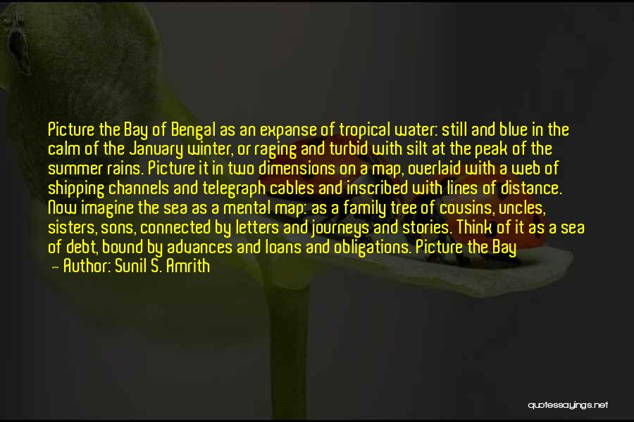 Jungle Quotes By Sunil S. Amrith