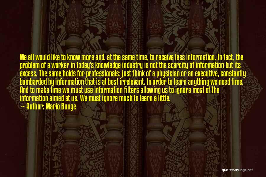 Just A Little More Time Quotes By Mario Bunge