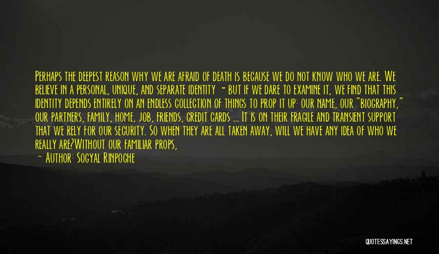 Just Because Cards Quotes By Sogyal Rinpoche