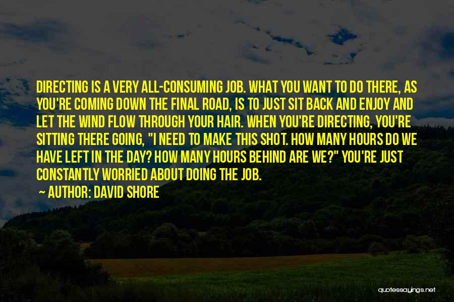 Just Doing Your Job Quotes By David Shore