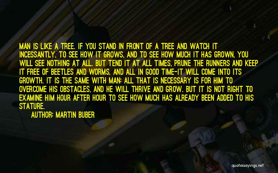 Just Grow Up Already Quotes By Martin Buber