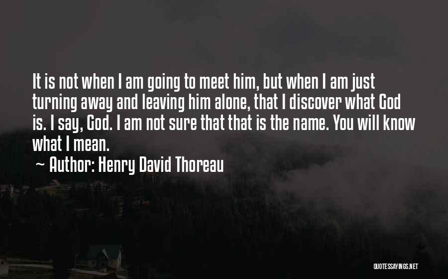 Just Know You're Not Alone Quotes By Henry David Thoreau