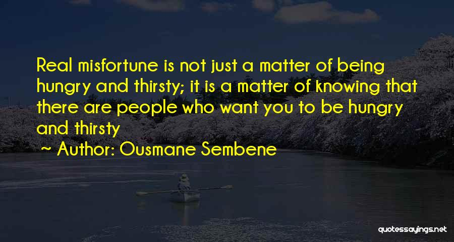 Just Knowing You're There Quotes By Ousmane Sembene