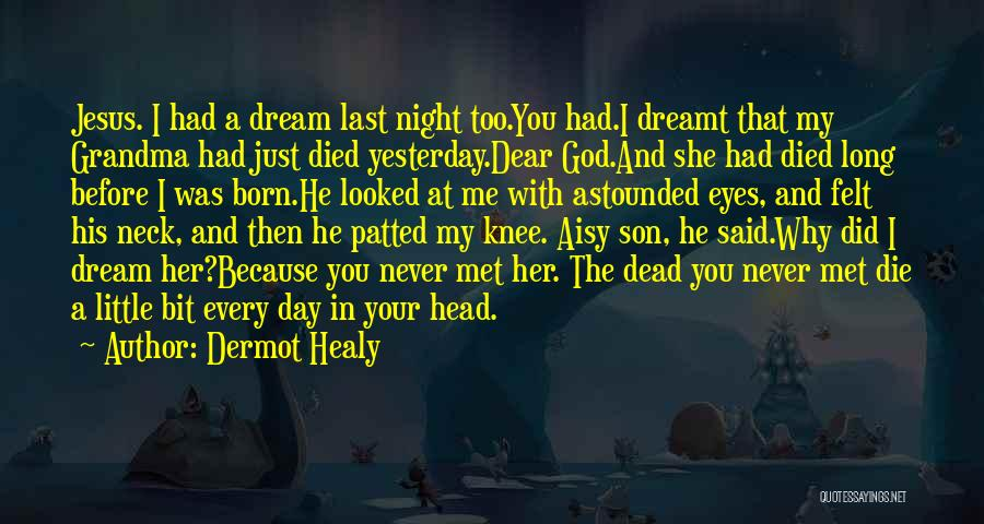 Just Met You Quotes By Dermot Healy