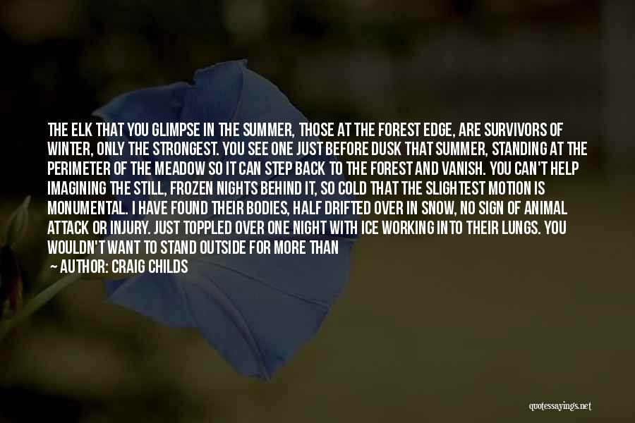 Just One Of Those Nights Quotes By Craig Childs