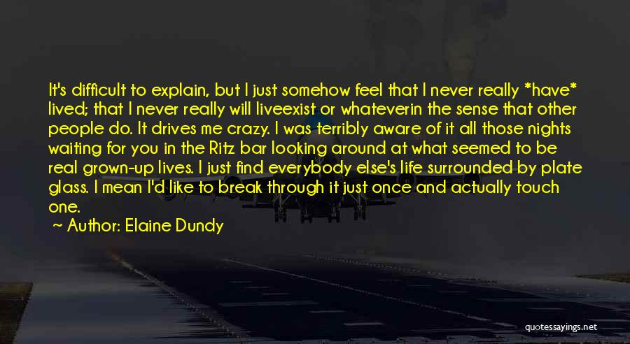 Just One Of Those Nights Quotes By Elaine Dundy